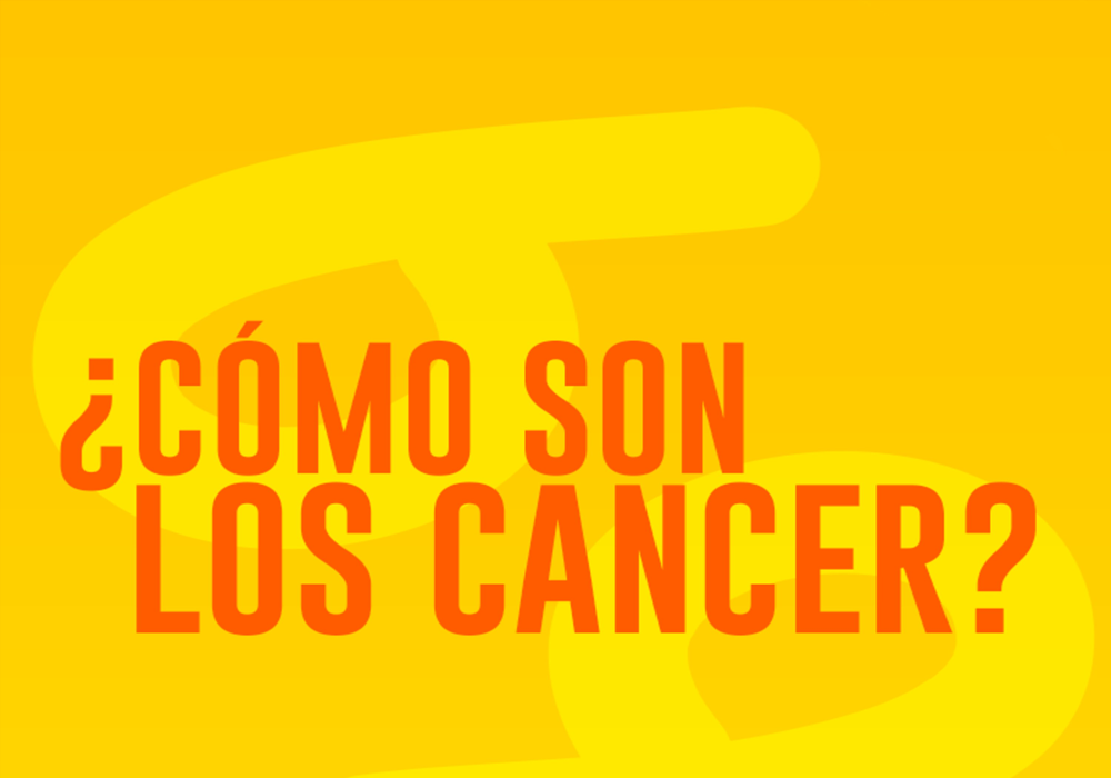 Ver todas las entradas en CANCER